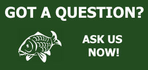 ask a fishing question